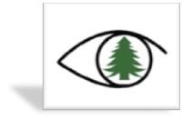 GV Logo 3D